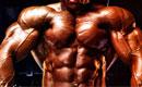 Строим мышцы