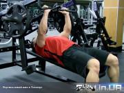Упражнение: Вертикальный Жим в Хаммере