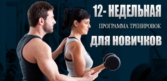 12-Недельная Программа Тренировок Для Новичков
