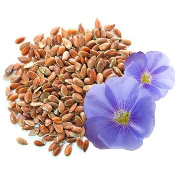 Калорийность: Семена Льна