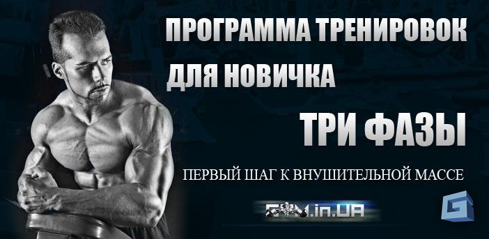 Программа Тренировок Три Фазы для Новичков
