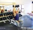 Упражнение: Жим Гантелей сидя