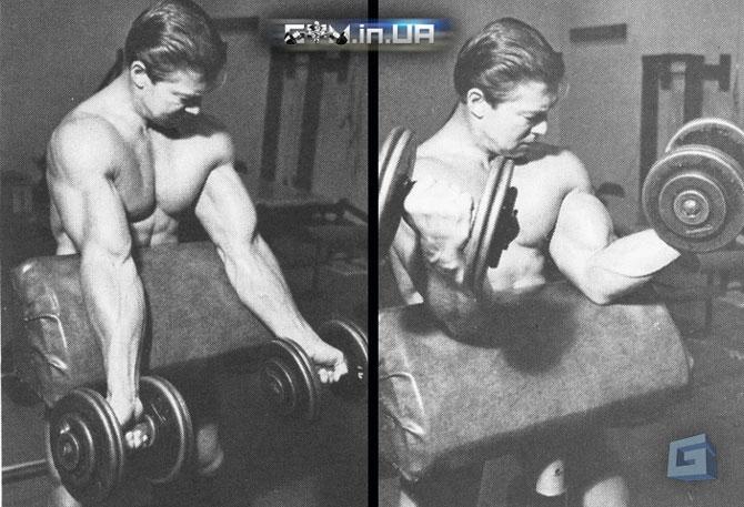 Тренируем бицепс как Ларри Скотт - подъем гантелей в пюпитре