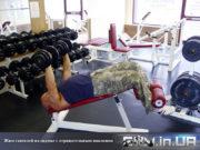 База упражнений: Жим гантелей на скамье с отрицательным наклоном