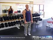 Упражнение: Подъем штанги на бицепс обратным хватом