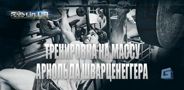 Объёмный тренинг Арнольда Шварценеггера