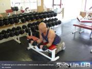 Упражнение для предплечий: Сгибание рук в запястьях с гантелями ладонями вверх на скамье
