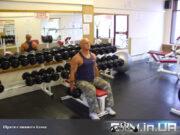 Упражнение: Шраги с гантелями сидя