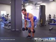 Упражнение: Тяга гантелей в наклоне