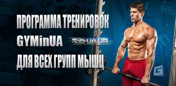 Программа тренировок GYM.in.UA всех групп мышц